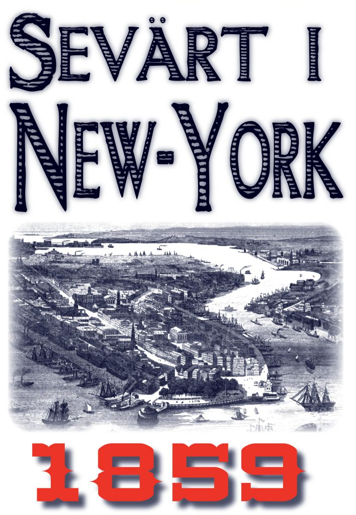 Book Cover: Skildring av New York